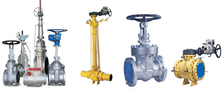 Trunnion Mounted Ball Valves Manufacturers in India