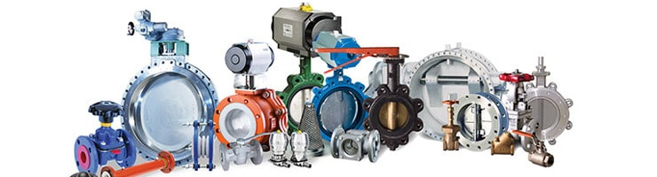 Duplex Steel Valves Manufacturers in India